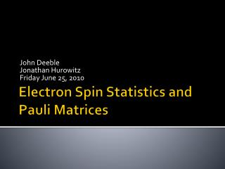 Electron Spin Statistics and Pauli Matrices
