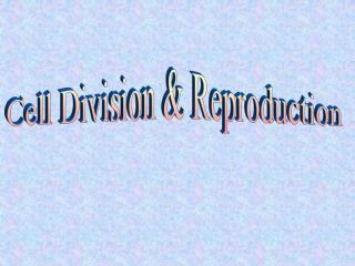 Cell Division & Reproduction
