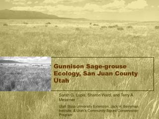 Gunnison Sage-grouse Ecology, San Juan County Utah