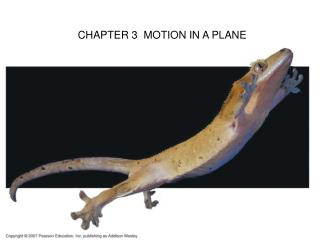 CHAPTER 3  MOTION IN A PLANE