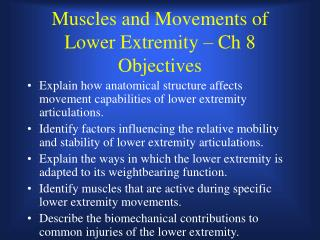 Muscles and Movements of Lower Extremity – Ch 8  Objectives
