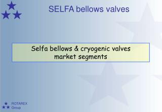 Selfa bellows & cryogenic valves market segments
