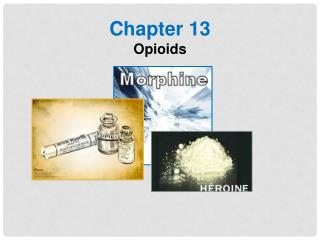 Chapter 13 Opioids