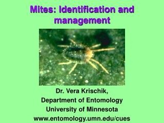 Mites: Identification and management