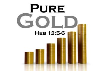 "Can you imagine the determination it takes to be ""pure gold?"""
