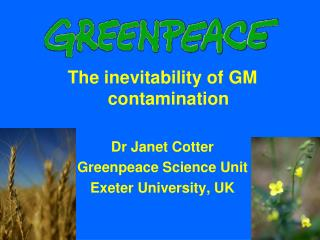 The inevitability of GM contamination Dr Janet Cotter Greenpeace Science Unit