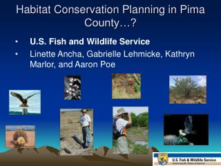 Habitat Conservation Planning in Pima County…?