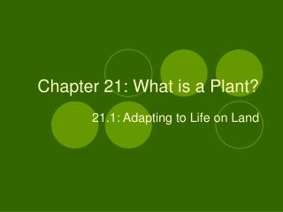Chapter 21: What is a Plant?