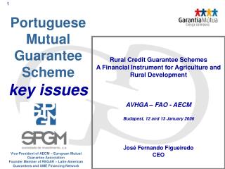 Portuguese Mutual Guarantee Scheme key issues