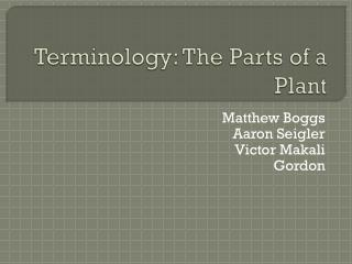 Terminology: The Parts of a Plant