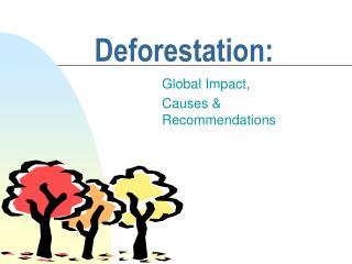 Deforestation: