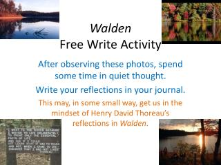 Walden Free Write Activity