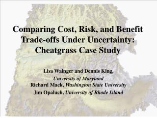 Comparing Cost, Risk, and Benefit Trade-offs Under Uncertainty:  Cheatgrass Case Study