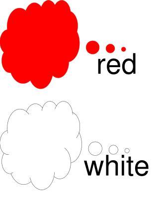 red white white