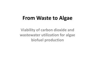 From Waste to Algae
