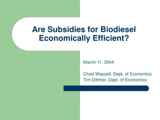 Are Subsidies for Biodiesel Economically Efficient?