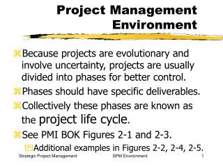 Project Management Environment
