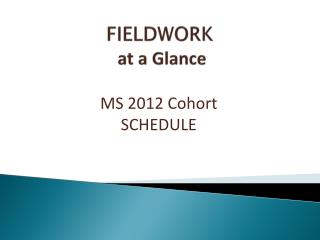 FIELDWORK  at a Glance