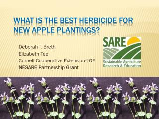 What is the best herbicide for  New Apple Plantings?