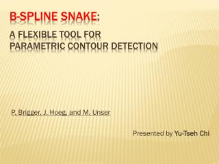 B- Spline  Snake :  A Flexible Tool for  Parametric Contour Detection