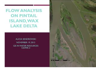 Flow analysis on Pintail island, Wax Lake  D elta