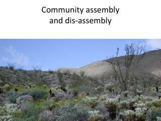 Community assembly  and  dis -assembly