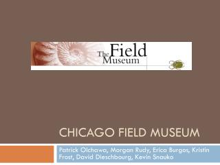 Chicago Field Museum