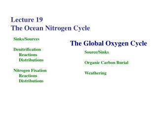 Lecture 19  The Ocean Nitrogen Cycle
