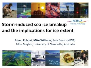 Storm-induced sea ice breakup and the implications for ice extent