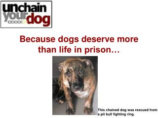 Because dogs deserve more  than life in prison…