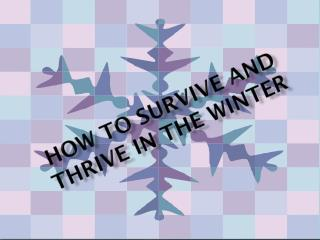 How to Survive and Thrive in the Winter