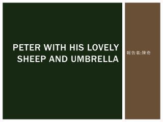 Peter with his lovely sheep and umbrella