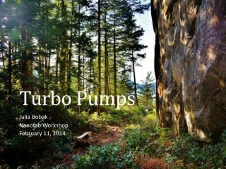 Turbo Pumps