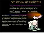 PEDAGOGIA DE PROJETOS http:pontodeencontro.proinfoc.br ...