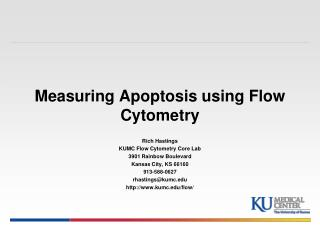 Measuring Apoptosis using Flow Cytometry