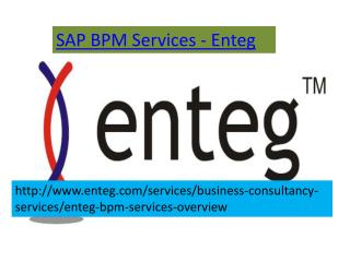 SAP BPM Services-Enteg