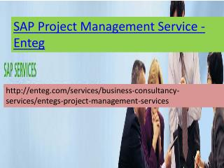 SAP Project Management Services-Enteg