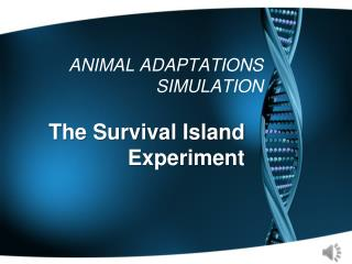 ANIMAL ADAPTATIONS SIMULATION
