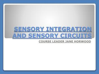 SENSORY INTEGRATION AND SENSORY CIRCUITS