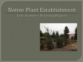 Native Plant Establishment Late Summer Planting Project