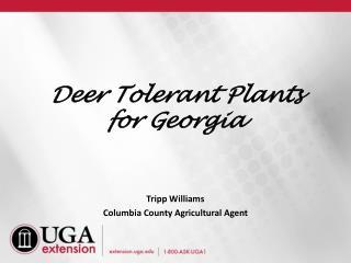 Deer Tolerant Plants for Georgia