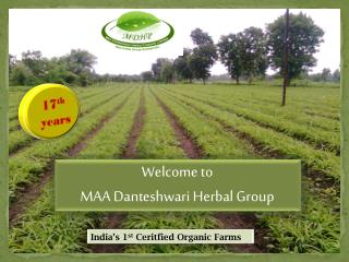 Welcome to  MAA Danteshwari Herbal Group