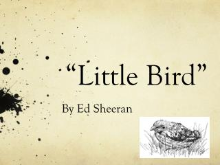"""Little Bird"""