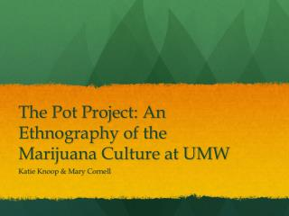 The Pot Project: An Ethnography of the Marijuana Culture at UMW