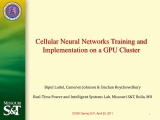 Cellular Neural Networks Training and Implementation on a GPU Cluster