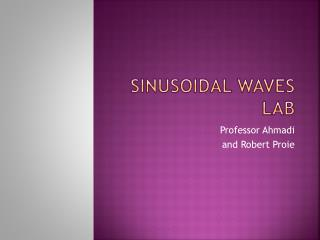 Sinusoidal Waves Lab