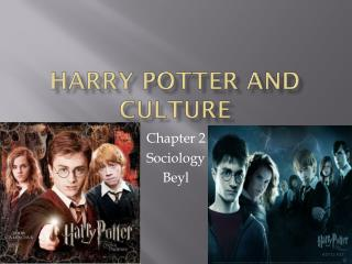 Harry Potter and Culture