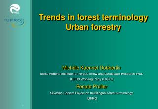 Trends in forest terminology Urban forestry