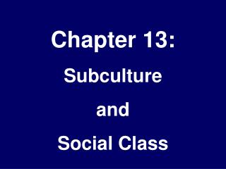 Chapter 13: Subculture  and Social Class