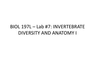 BIOL 197L – Lab #7: INVERTEBRATE DIVERSITY AND ANATOMY I